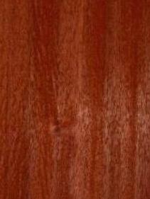 Padauk African Veneer